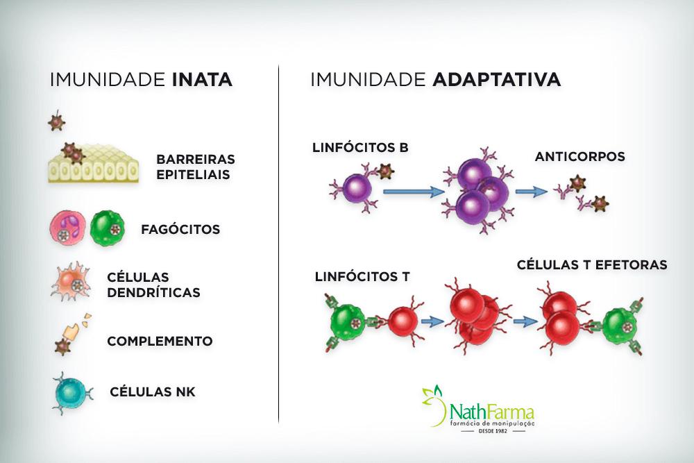 Vitaminas para aumentar imunidade sistema imunológico